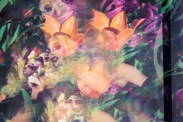 Matthew Terrell, Dee-liteful Garden, 2013, archival pigment print, 10 x 15 inches.  Photo courtesy of the artist.