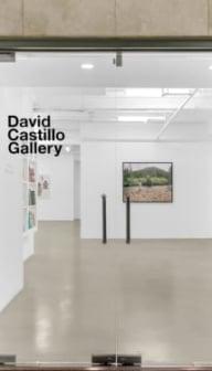 David Castillo Gallery