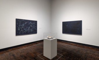 Bethany Collins at the Frist Art Museum